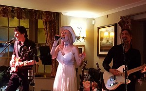 The Stories, The Pheasant, Chippenham, April 2018. Photo by Nicola Williams.